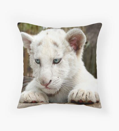 White Lion Cub Throw Pillow