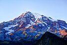 Alpine Glow on Rainier by Tori Snow
