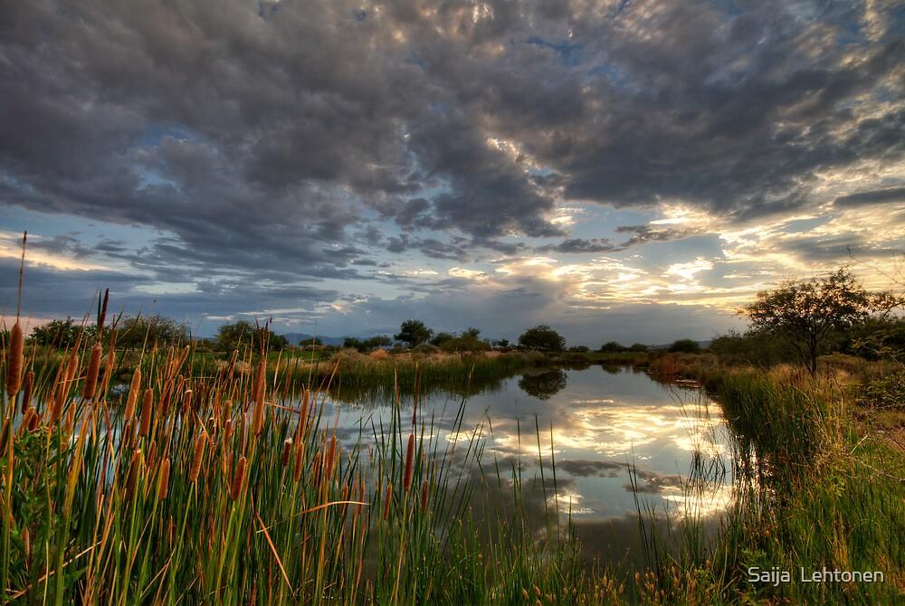The Calm Before the Storm  by Saija  Lehtonen