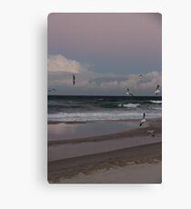 Seagull Sunset Gold Coast Canvas Print
