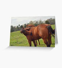 Brown Horse  Grußkarte