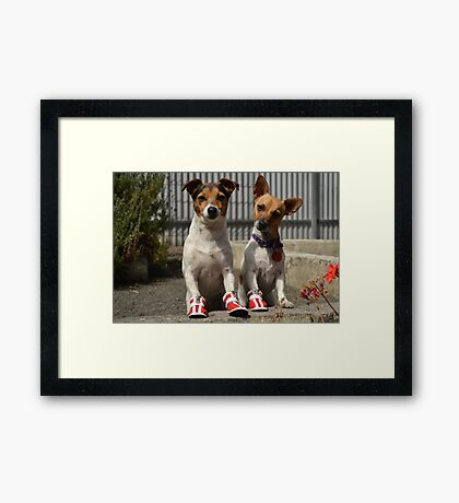 My dogs are a part of my family Framed Print