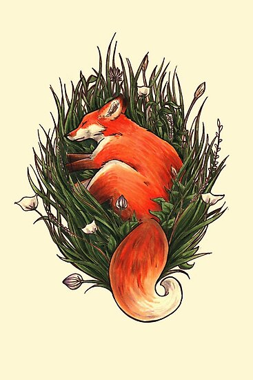 Fox in the Brush by Ashley Weiler