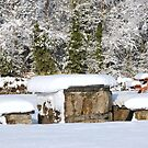 Picnic in the snow by Sandra Oddy