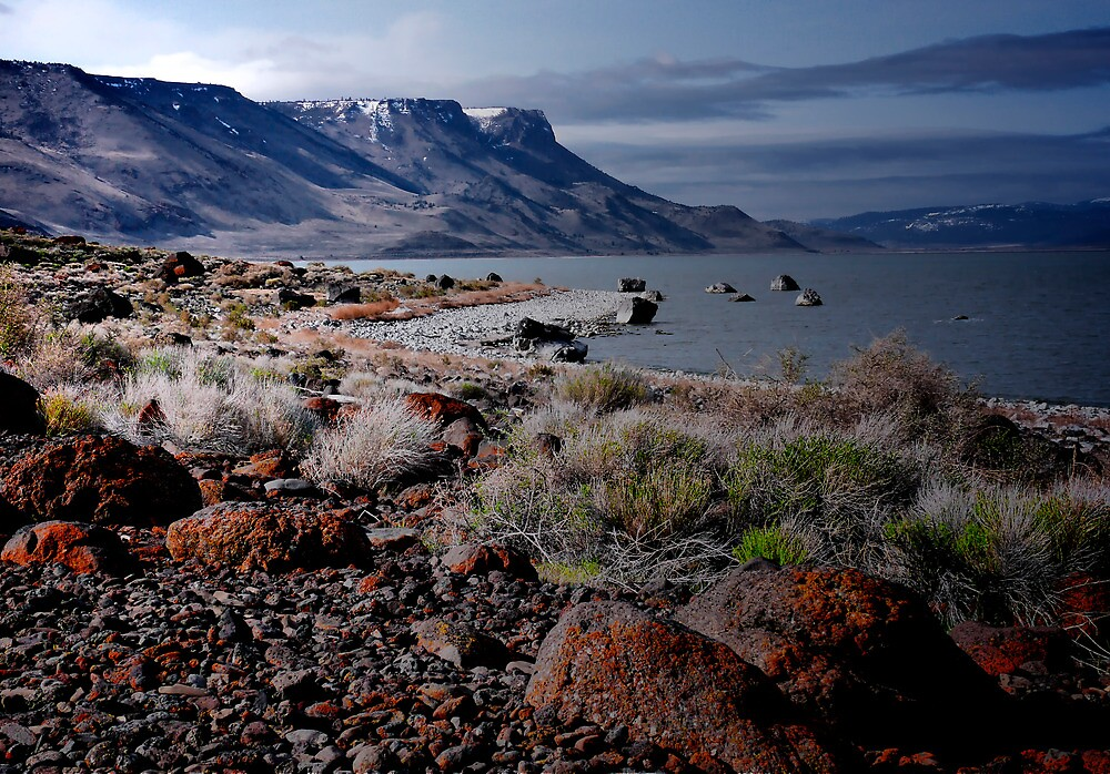 Lake Abert by Charles & Patricia   Harkins ~ Picture Oregon