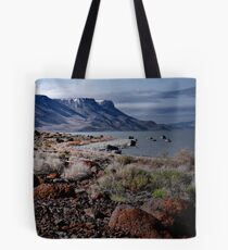 Lake Abert Tote Bag