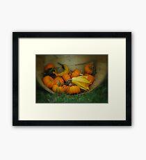 Fall Vegetables  Framed Print