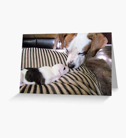 Daddy Buster and Son, Pirate-3 weeks Greeting Card