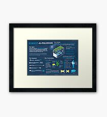 Sukkot explained: A Jewish holiday infographic Framed Print