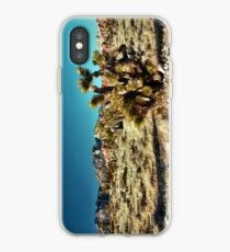 Red Rock Canyon National Conservation Area iPhone Case