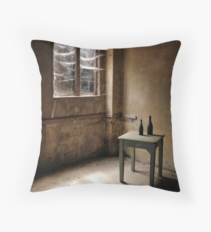 Cobwebs at the Window Throw Pillow