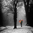 A Lonely Winters Walk by Patricia Jacobs DPAGB BPE4