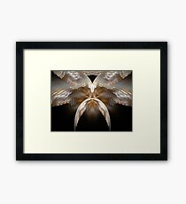 Wise Man From China Framed Print
