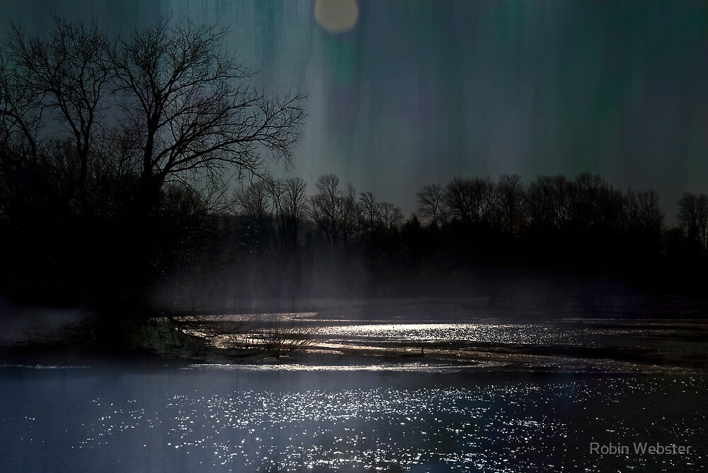 Moonlit Whispers by Robin Webster