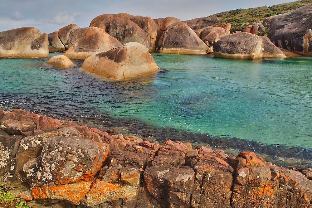 Elephants, Rocks and Lichen. William Bay NP. WA. by John Sharp
