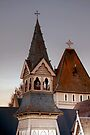 St Augustine's Rooftops, Waimate by Christine Smith