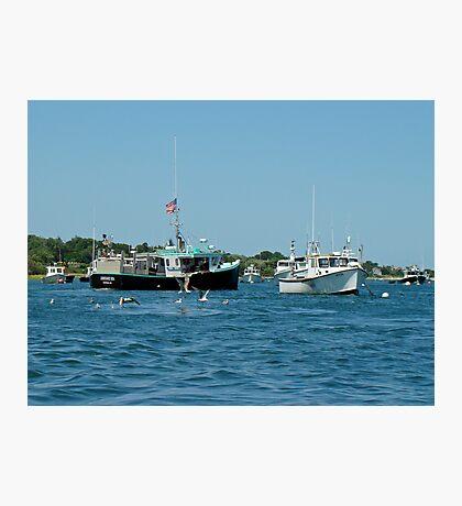 Sleepy Boats at Chatham Harbor - Cape Cod  MA Photographic Print