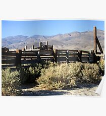 Sage Brush And Tumble Weeds Poster