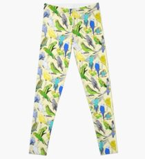 Budgies - Pale Leggings