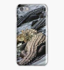 American Alligators! iPhone Case/Skin
