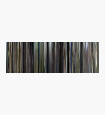 Moviebarcode: Forrest Gump (1994) Photographic Print