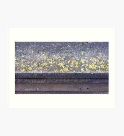 Lichen ledge Art Print
