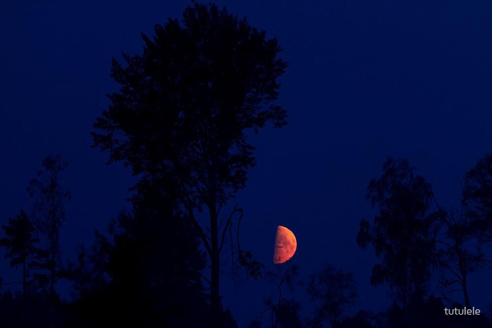 Moon Shining High by tutulele