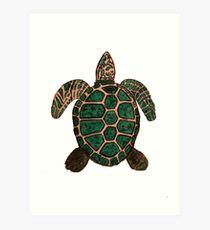 """Turtle""  by Carter L. Shepard Art Print"