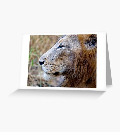 Wet Head Greeting Card