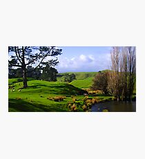 New Zealand Countryside Photographic Print