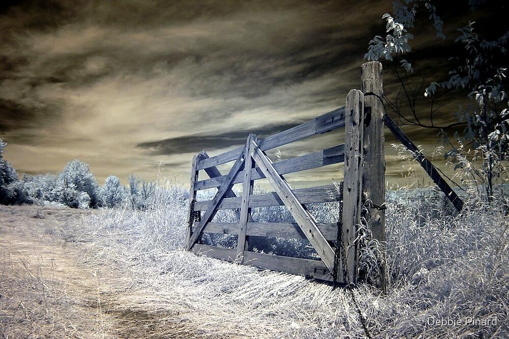 The Farm Gate - Dunrobin Ontario by Debbie Pinard