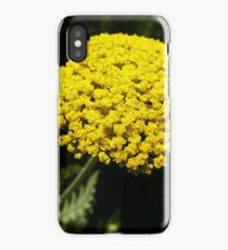 Yellow Yarrow Macro iPhone Case/Skin
