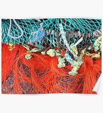 fish net Poster