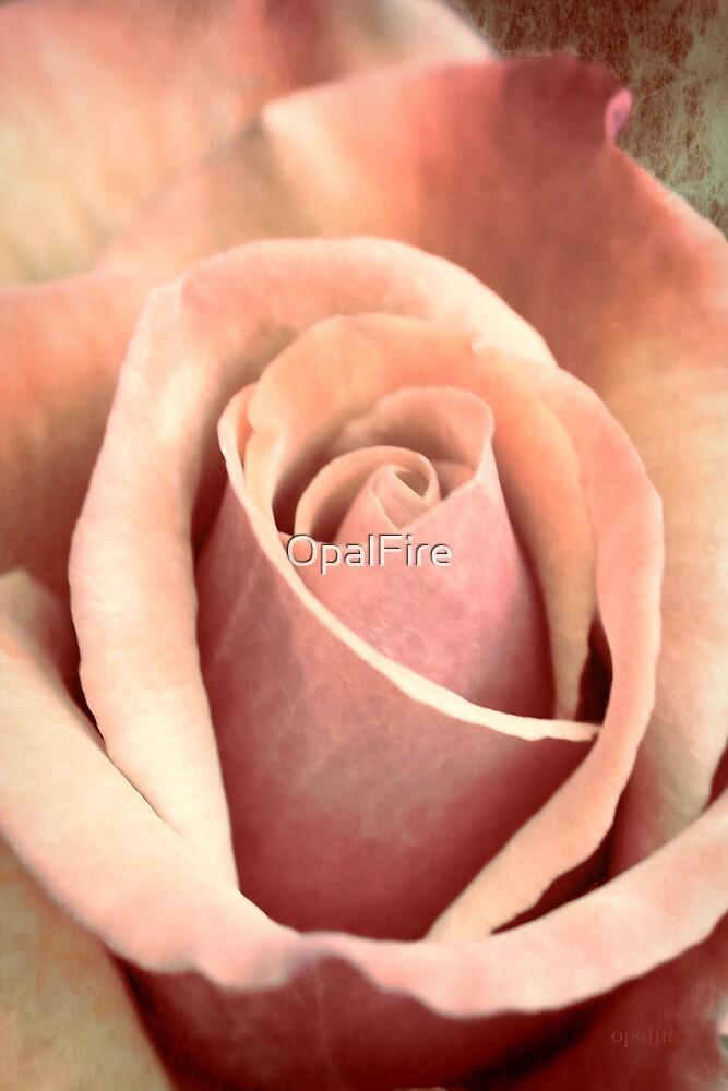 Vintage Rose by OpalFire