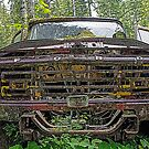 Old ford by Al Williscroft