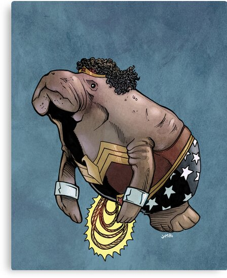 Wonder Womanatee SALE! by jomiha