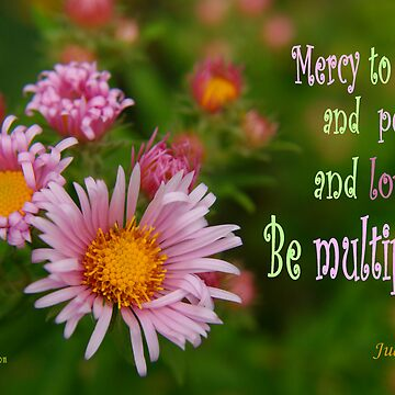 Mercy, Peace, and Love Multiplied ~ Jude 1:2 by robinclifton