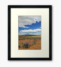 Lupines In Honey Lake Valley Framed Print