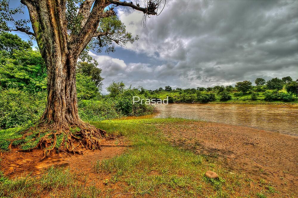 Riverside by Prasad