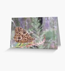 Last of the summer butterflies Greeting Card