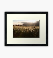 Sunset after the rain Framed Print