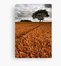 bumper crop Canvas Print