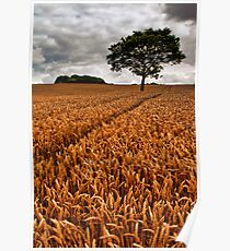 bumper crop Poster