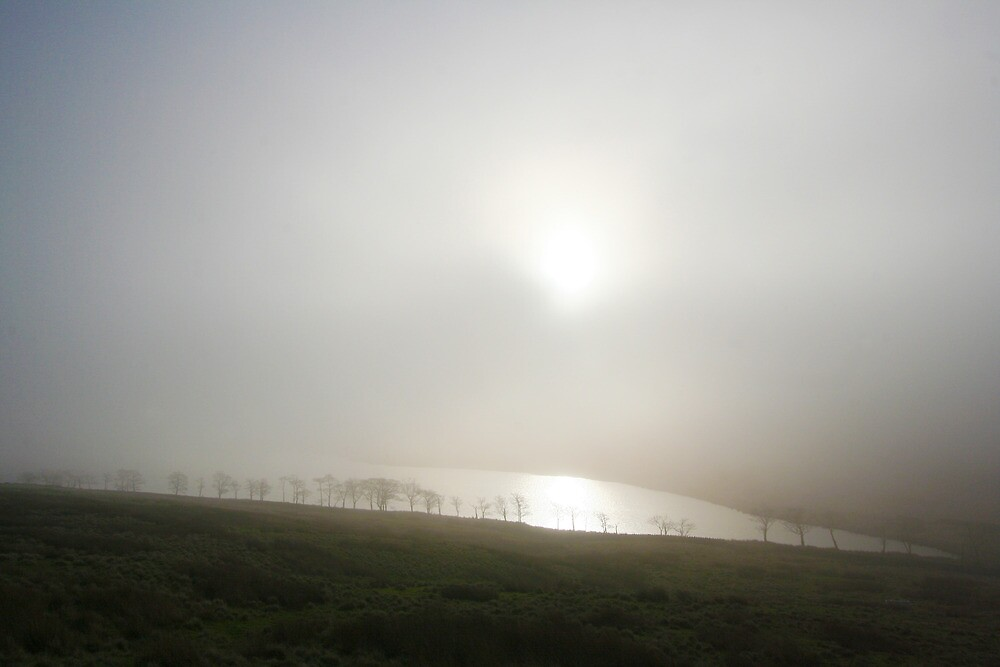Misty Widdop by Amanda Clegg
