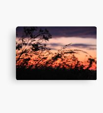 Silhouettes in the wind Canvas Print