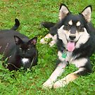 Rosie and Mia - Best Friends by Vivian Eagleson
