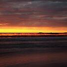 seaspray. eastcoast, tasmania  by tim buckley   bodhiimages