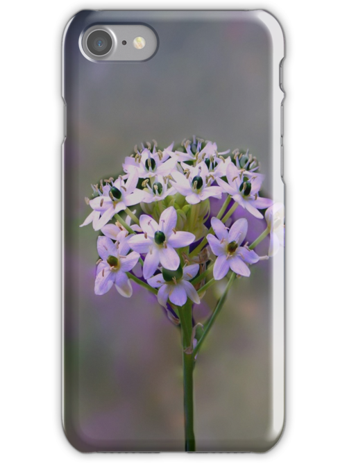 Purple Iphone Flower by Judi Taylor