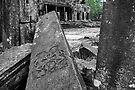 The Fallen, Bayon, Cambodia by Michael Treloar