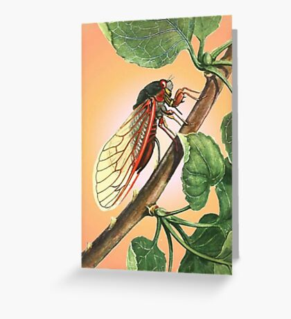 Vector Image of A 17 Year Cicada Greeting Card